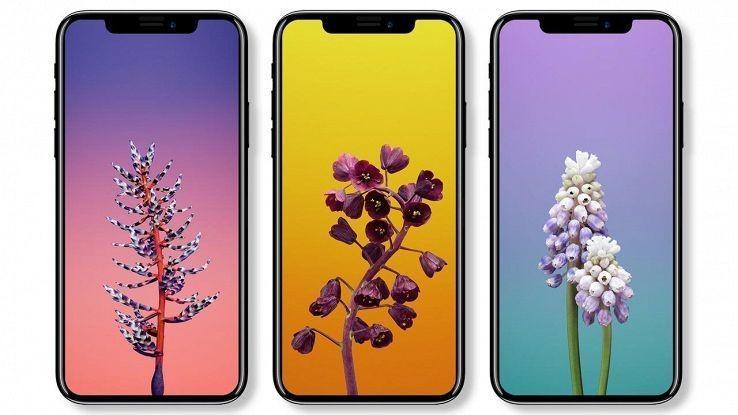 iphone-x-311a56aa3c59cb4c56b4e56ea2349f064